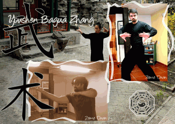 youshen bagua zhang